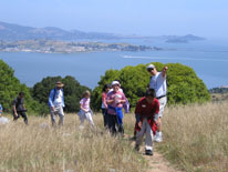 Kids on a Nature Guide hike