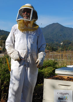 Marin County beekeeper David Peterson