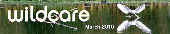 March eNews header. Photo by Ken Benjamin
