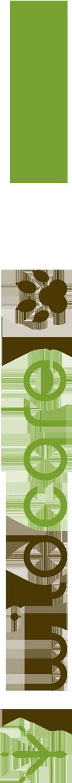 logo-+-mugsv2.png